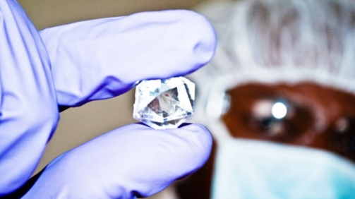 Diamond Specialist Inspect An Uncut Rock